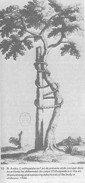 Foucault tree